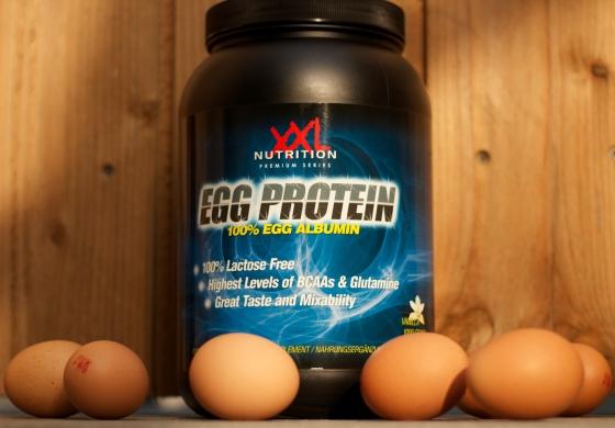 eggprotein